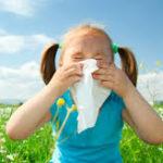 alergia polen-pollen allergy