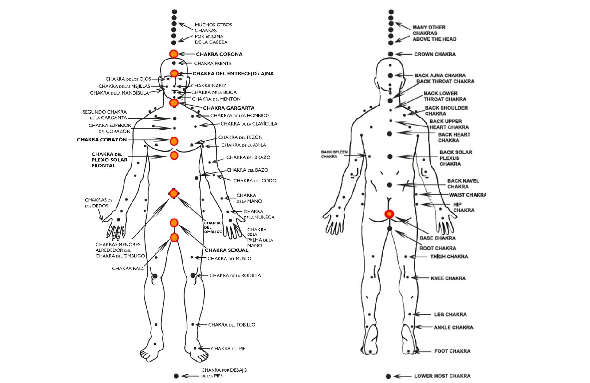 sistema de chakras