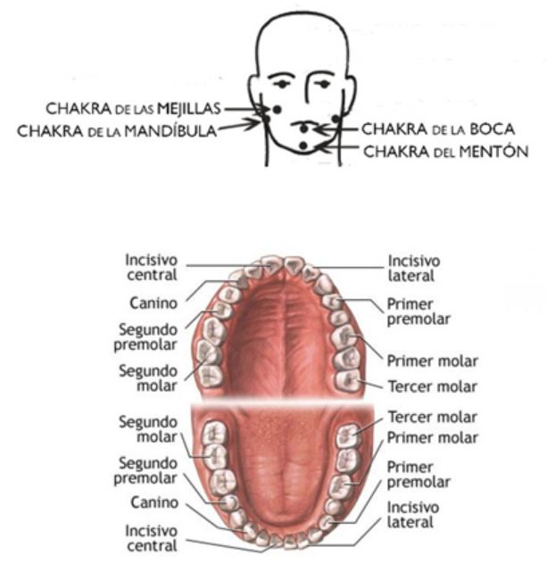 periodontitis sanar
